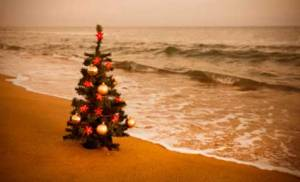 christmastreeonbeach476x290